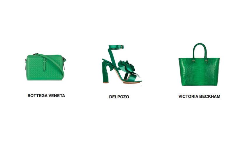 barvy zelena